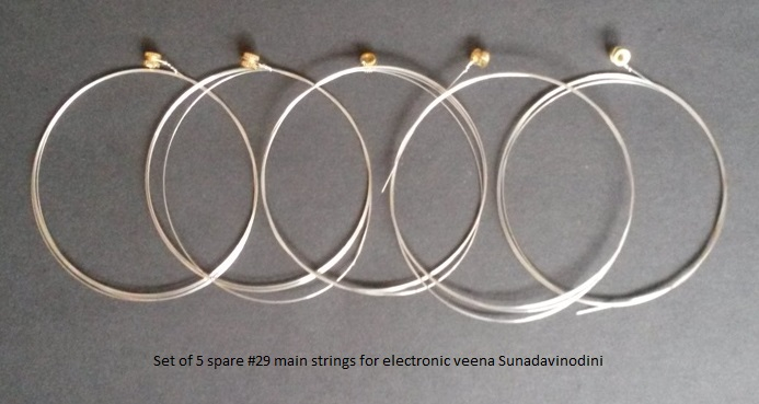 Electronic veena main strings spare
